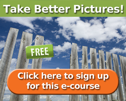 free-photo-ecourse