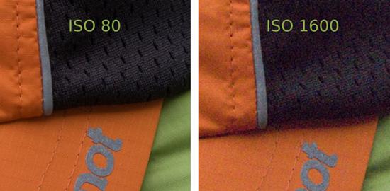 ISO-80-1600-detail.jpg