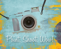 point-shoot-wow-button-2